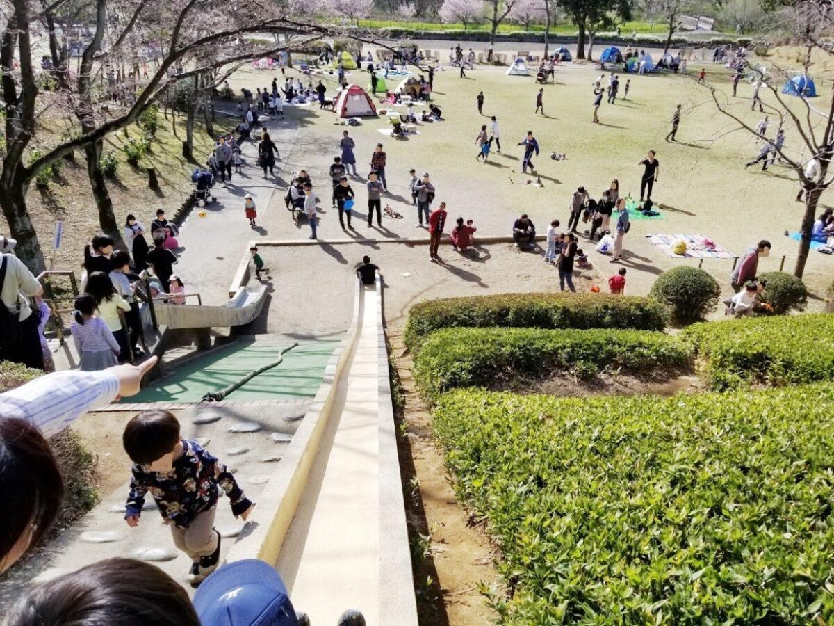 上尾丸山公園(上尾市)