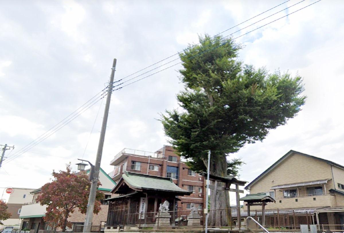 中町浅間神社(越谷市)