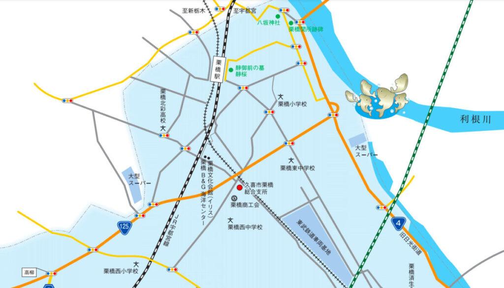 ハクレンのジャンプが見れる場所(久喜市栗橋)