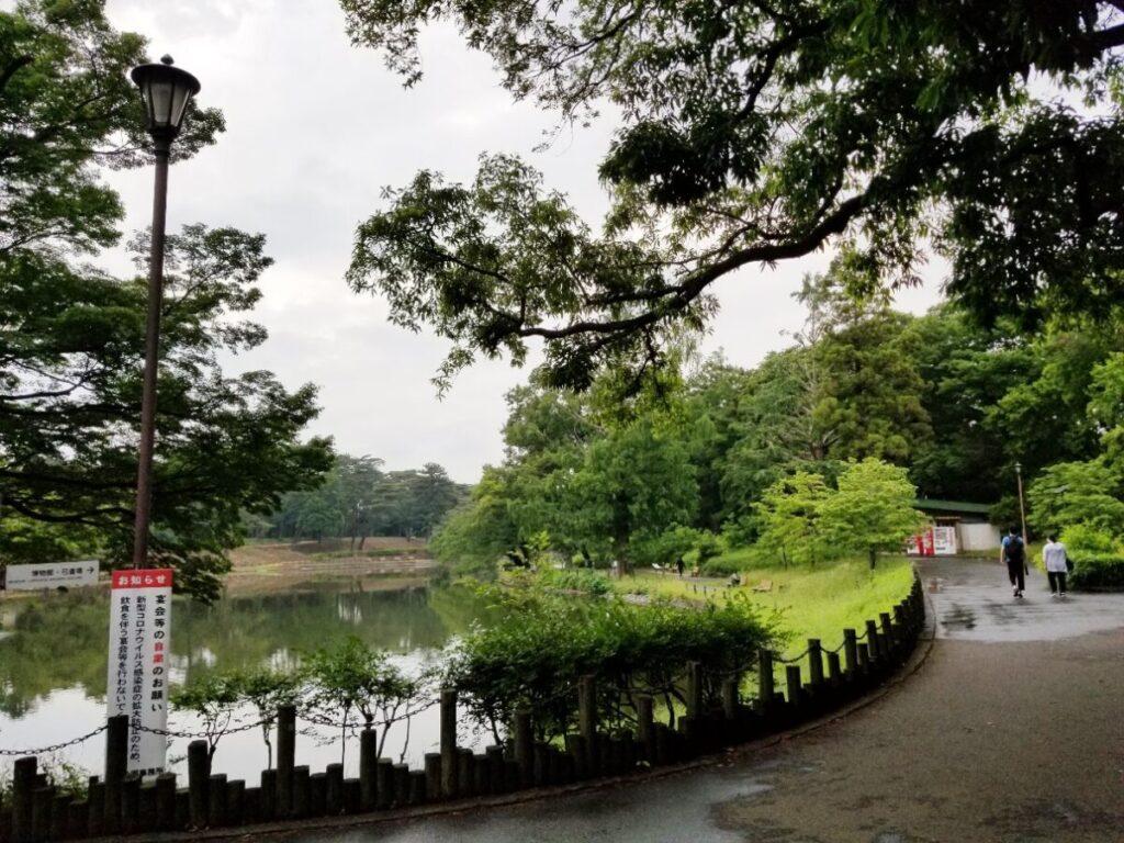 大宮公園は桜の花見の名所