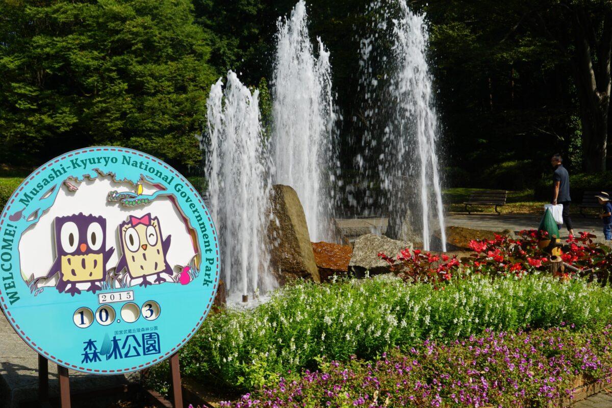 国営武蔵丘陵森林公園(滑川町)